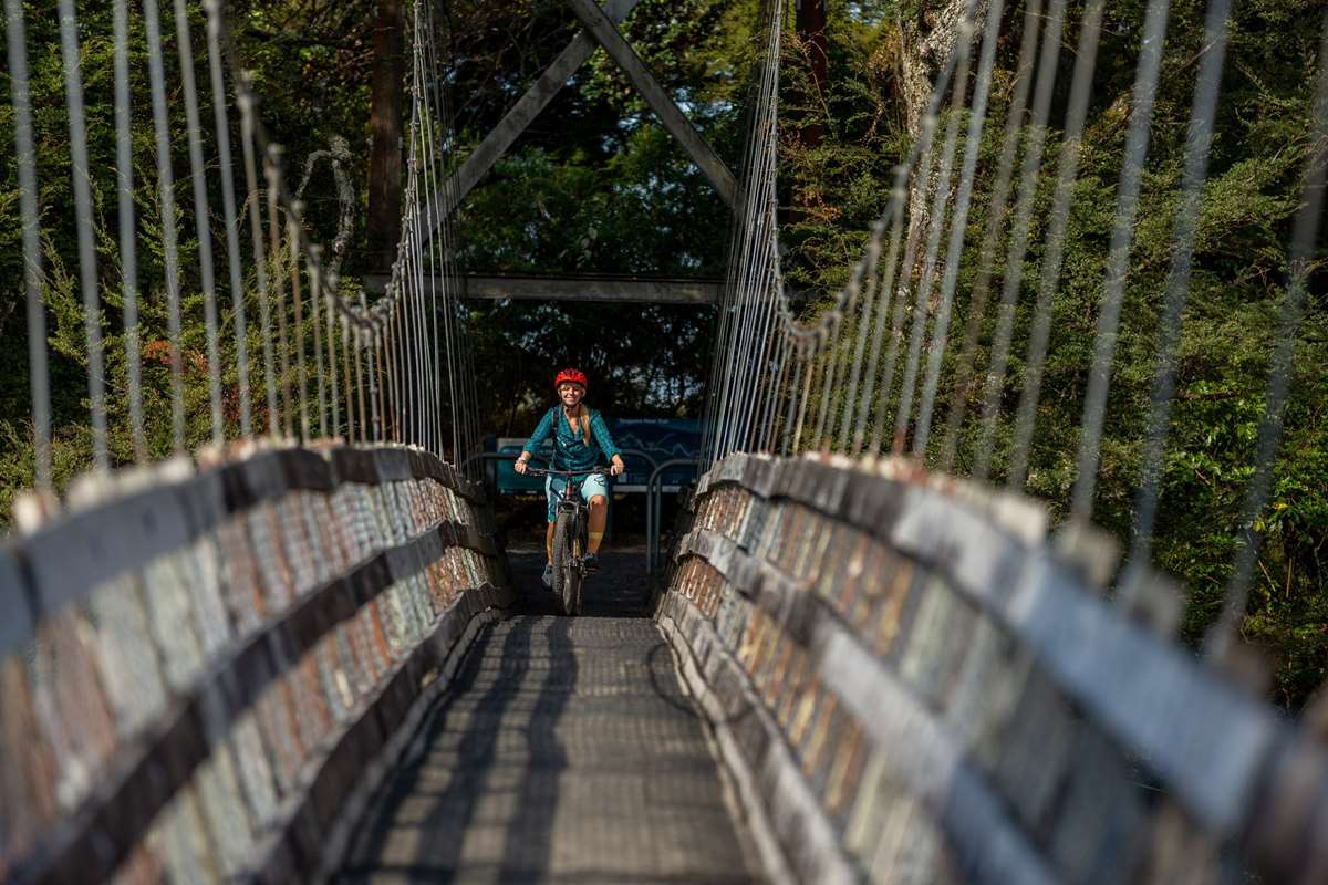Woman mountain biking bridge on the Tongariro River Trails - Turangi, New Zealand